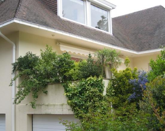 Aménagement jardin et plantations